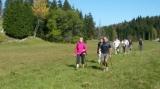 Stage de marche nordique dans le Jura